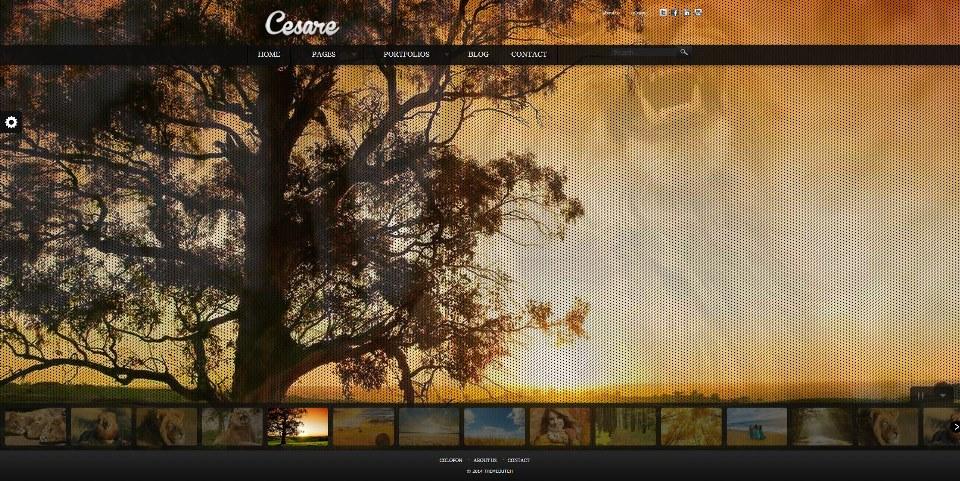 Cesare - WP Full Screen Portfolio Theme