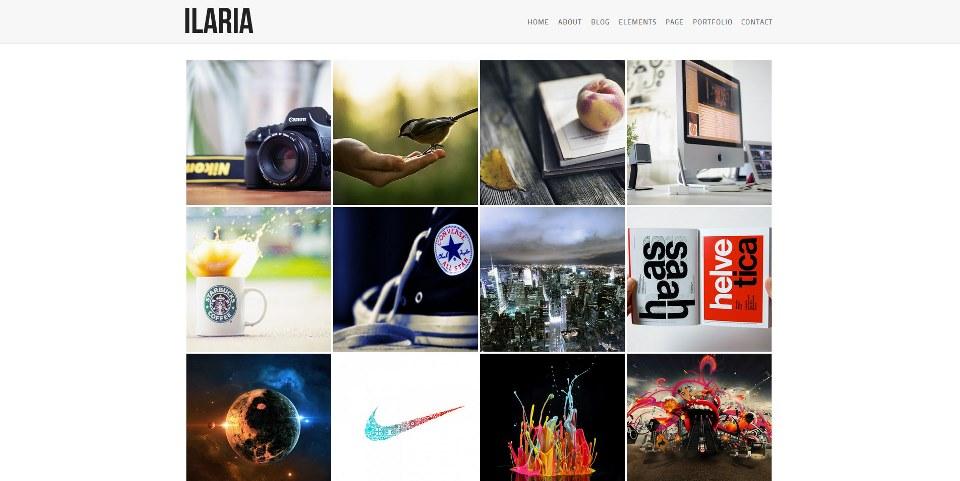 Ilaria Premium WordPress Theme Photography