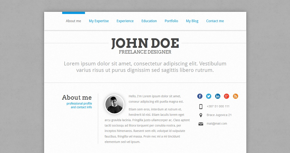 PerfectCV_WordPress_Theme