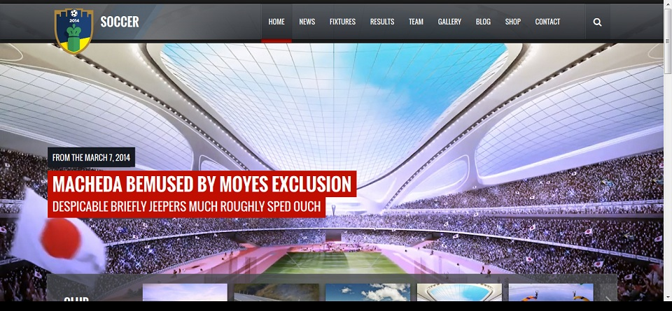 Soccer Club - Sports and Events News theme Preview - ThemeForest