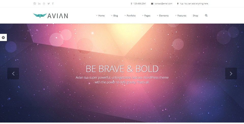 Avian - WordPress theme