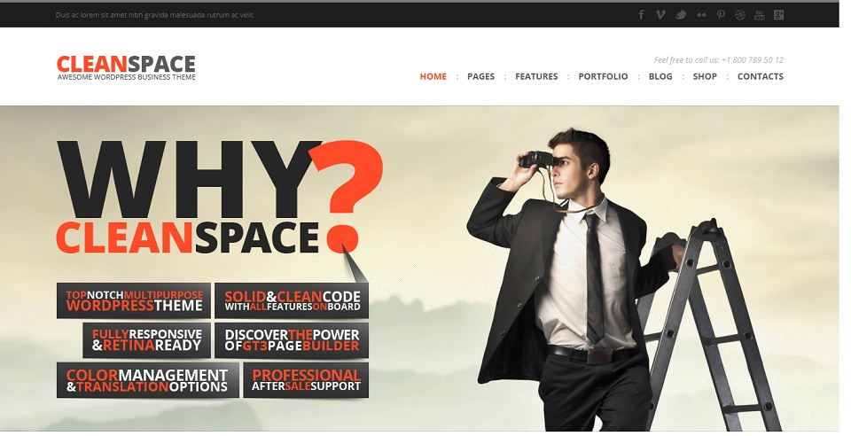 CleanSpace  - WordPress theme